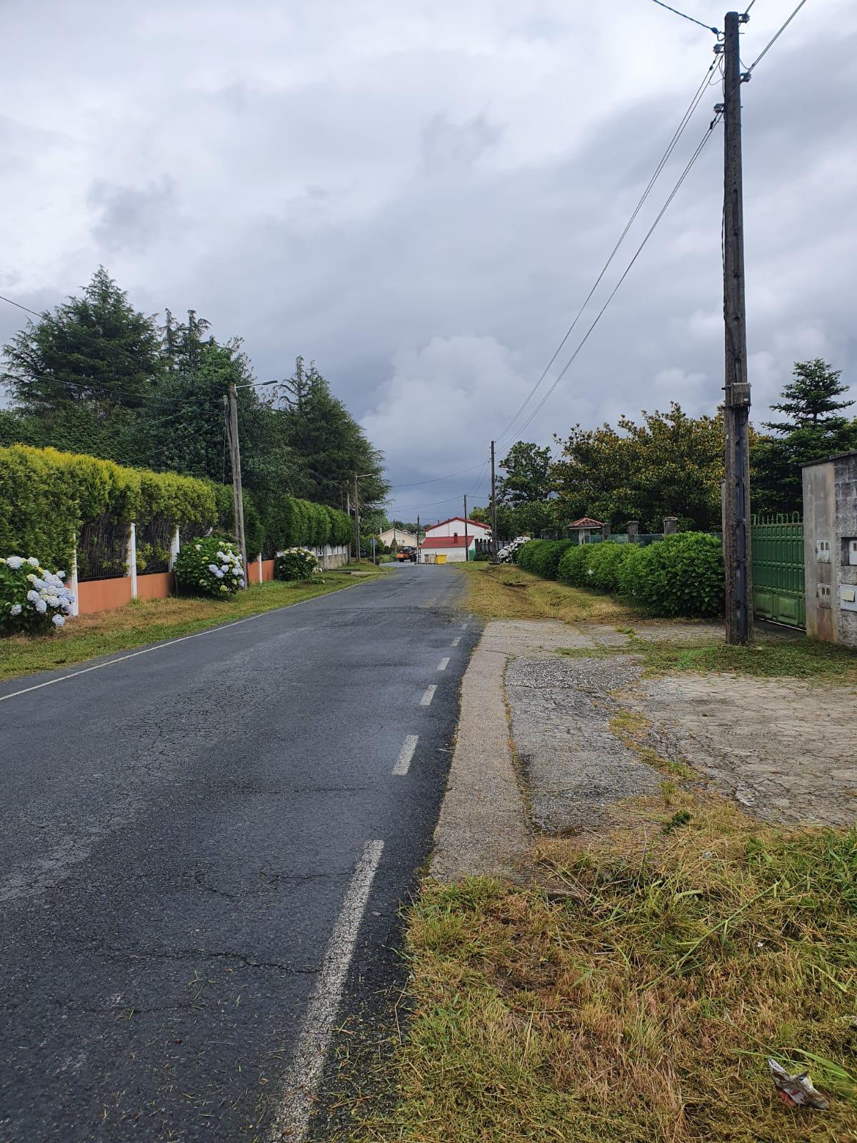 Desbroces viales del Concello de Ferrol